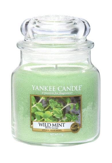 Lumanare parfumata medie in borcan Wild Mint de la Yankee Candle