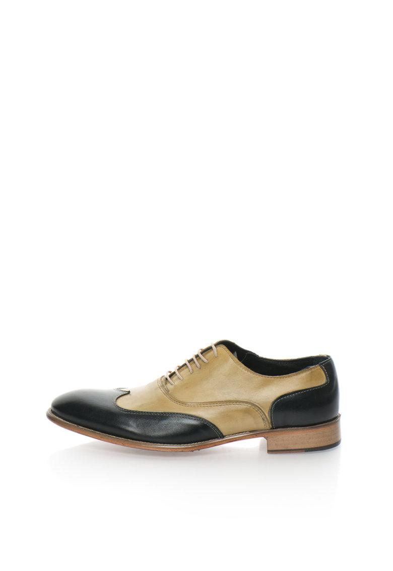 Zee Lane Collection Pantofi brogue negru cu verde oliv pal de piele Punta