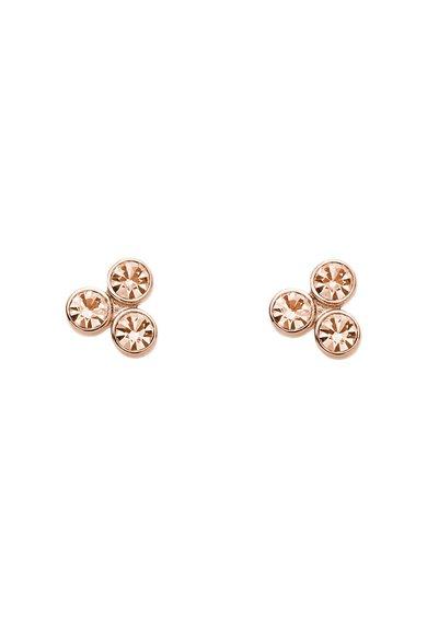 Cercei auriu rose cu tija decorati cu cristale roz