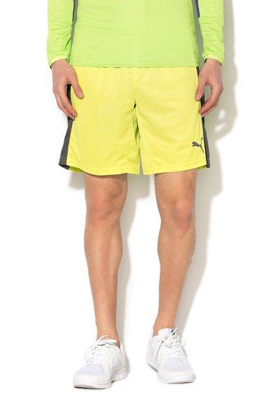 FashionDays.ro: Pantaloni scurti sport verde lime cu gri PowerCat Puma